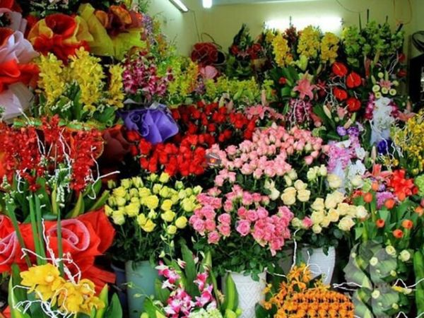 Flower Shop Nha Trang