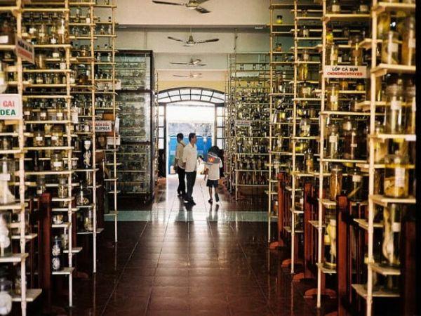 Nha Trang Oceanographic Institute